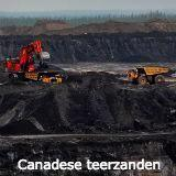 Forex - Canadese dollar en olieprijs laagst in 12 jaar - USD hoger